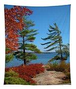 Windswept Point In Killbear Tapestry