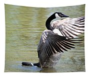 Wing Drying Tapestry