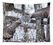 Wings Wide Open Tapestry