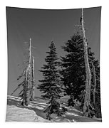 Winter Alpine Trees, Mount Rainier National Park, Washington, 2016 Tapestry