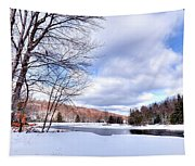 Winter At The Dam Tapestry