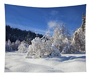 Winter Blanket Tapestry