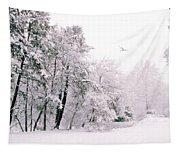 Winter White Tapestry