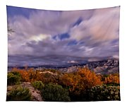 Winter Colors 23 Tapestry