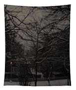 Winter Dusk Tapestry