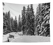Winter Forest Journey Tapestry