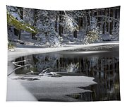 Winter Fresh Tapestry