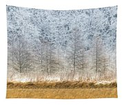 Winter Layers Tapestry