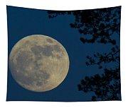Winter Moon Tapestry