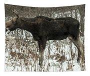 Winter Moose Tapestry
