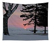 Winter Morning Tapestry