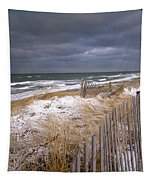 Winter On Cape Cod Tapestry