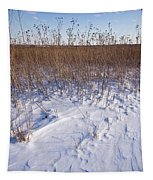Winter On The Prairie Tapestry