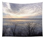 Winter Pastels Tapestry