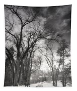 Winter Pathways Tapestry