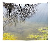 Winter Pond Reflections Tapestry