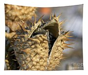 Winter Seed Pod Tapestry