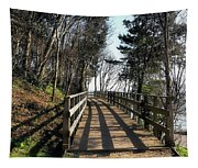 Winter Shadows At The Bridge Tapestry