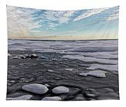 Winter Shoreline Tapestry