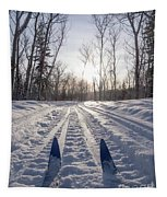 Winter Sport X-country Skis In Sunny Forest Tracks Tapestry