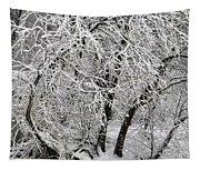 Winter Storm Skylar Tapestry