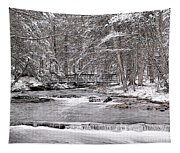Winter Stream And Woods Tapestry