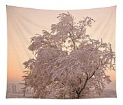 Winter Sunset Tapestry