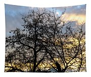 Winter Trees At Sunset Tapestry