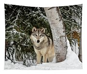 Winter Visitor Tapestry