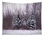 Winter White Magic Tapestry