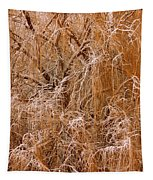 Winter Willow Branches Tapestry