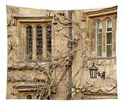 Winter Windows. Tapestry