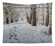 Winter Wonder Land Tapestry