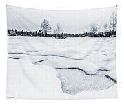 Winter Wonderland Bw Tapestry