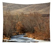 Winter Yakima River With Hills And Orchard Tapestry