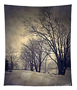 Winter's Dark Thoughts Tapestry