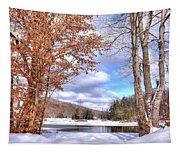 Winters Window Tapestry