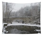 Wintertime In The Wissahickon Valley Tapestry