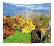 Withered Grape Vine Tapestry