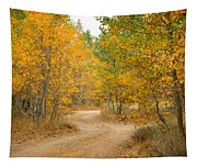 Wonder Filled Path Tapestry