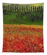 Wonderful Tuscany, Italy - 07  Tapestry