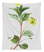Wood Loosestrife Tapestry