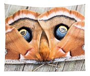 Woodland Moth Tapestry