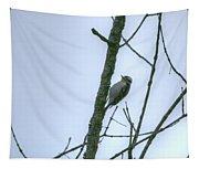 Woodpecker Tapestry