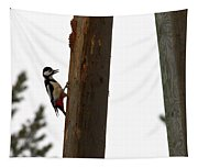 Woodpecker Workshop  Tapestry