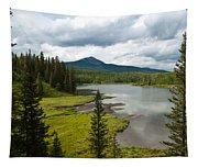 Wood's Lake Summer Landscape Tapestry