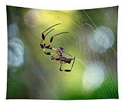 Working The Web Tapestry