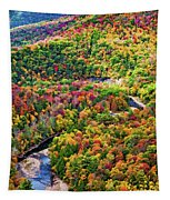 Worlds End State Park Lookout 3 - Paint Tapestry