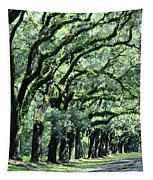Wormsloe Georgia No. 7668 1 Of 3 Set Color Tapestry