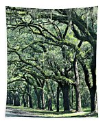 Wormsloe Georgia No. 7668 3 Of 3 Set Color Tapestry